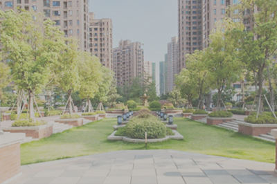 小区及校园环境绿化
