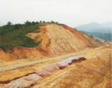随岳高速公路边坡绿化、护坡绿化及边坡支护